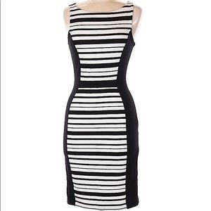 Anthropologie Weston Wear Fitted Striped Dress M